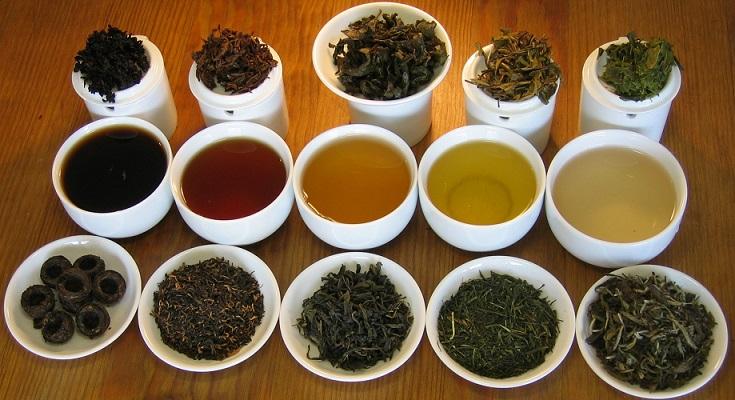 A különböző színű teák különféle teafajták - tévhit, valójában csak a feldolgozási folyamat más